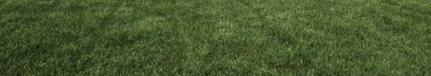 CAA-Québec Habitation - Trucs et conseils - Des engrais pour la pelouse