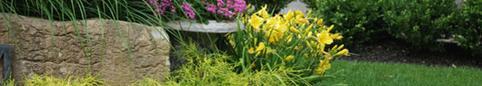 CAA-Quebec - Easy eco-landscaping