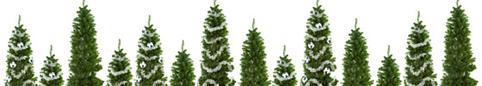 Habitation - Trucs et conseils - Noël magique et écologique