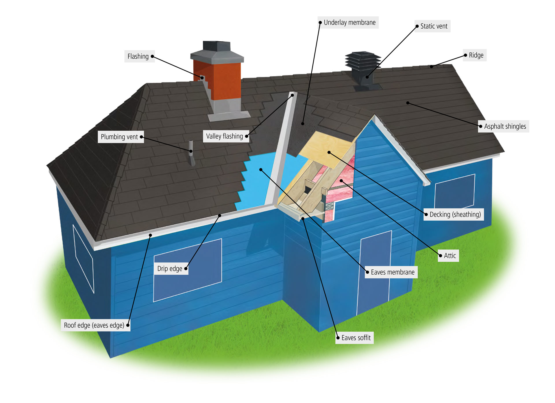 What to do if the roof flows 9