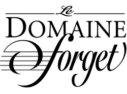 """Résultat de recherche d'images pour """"domaine forget logo"""""""